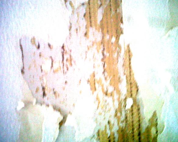 stills art (0-00-00-00)_16