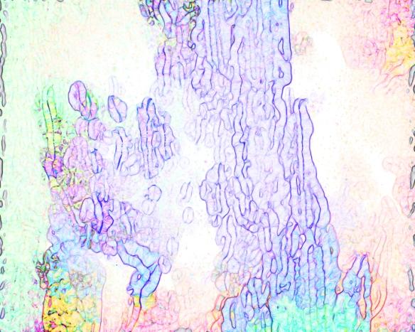 stills art (0-00-00-00)_19