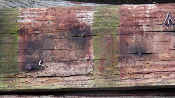 wood f4mmedia 1