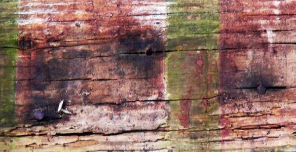 wood f4mmedia 1a