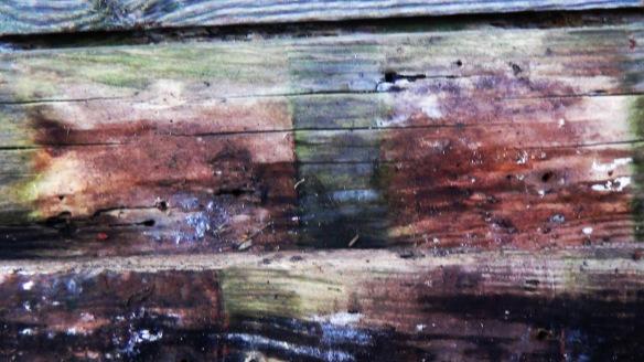 wood f4mmedia 2