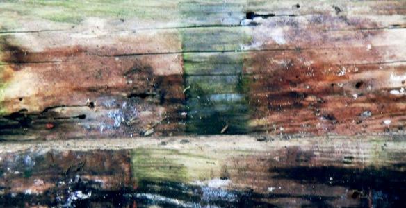 wood f4mmedia 2a