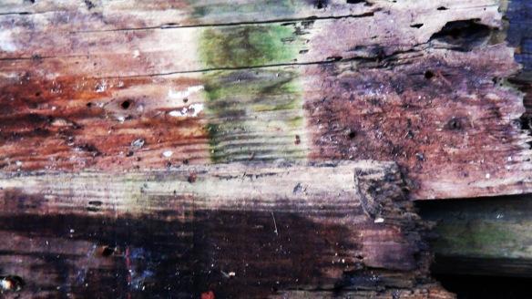 wood f4mmedia 3