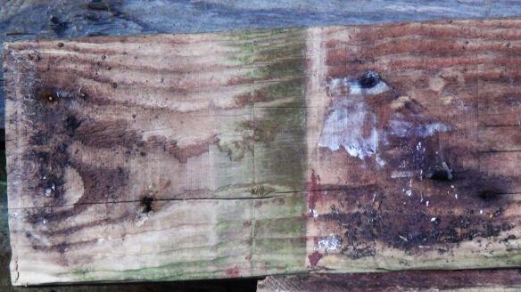 wood f4mmedia 4